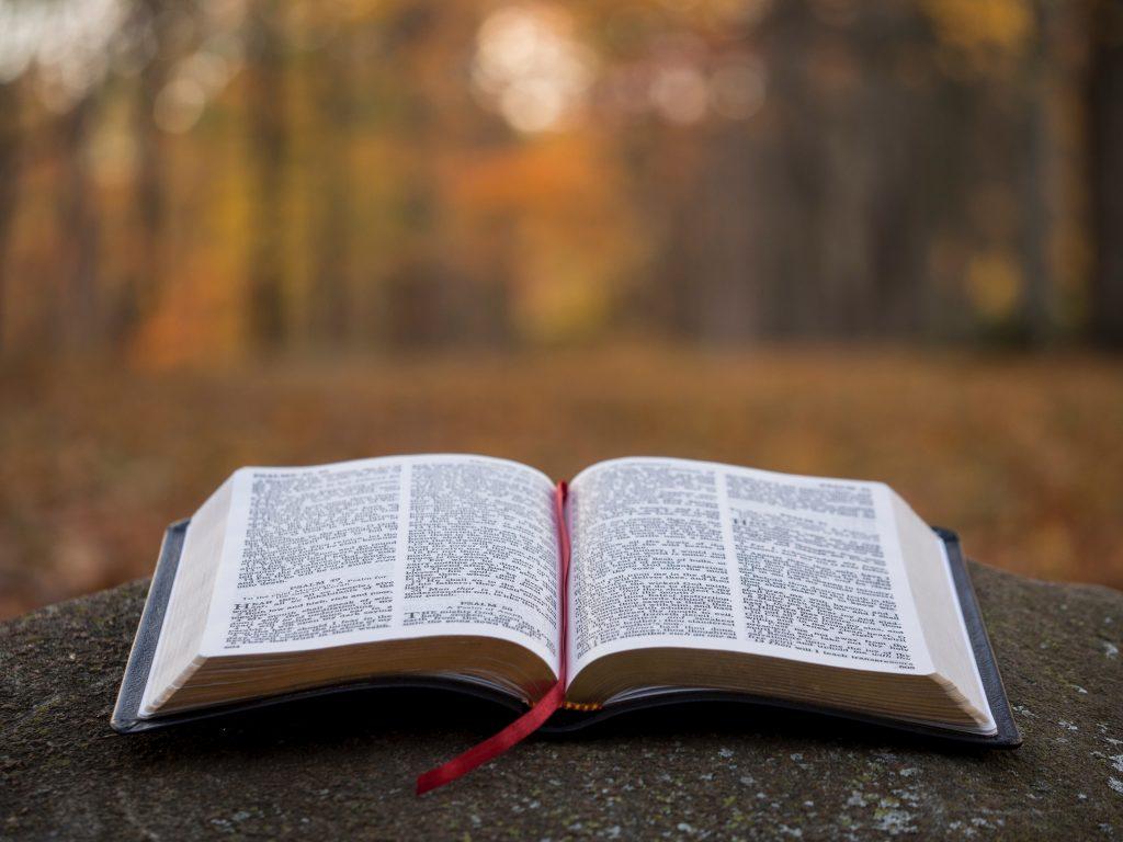 Personal devotions, Bible study